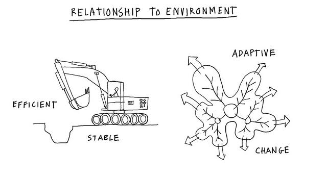 Relación con el entorno